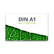 Foto-Leinwand mit Keilrahmen 84,1 x 59,4 cm (DIN A1)