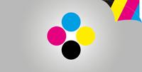 Hohlkammerplatten 4/4-farbig (beidseitiger Druck)